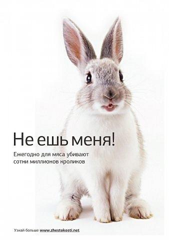 http://cs11194.vkontakte.ru/u6157311/100937947/x_593179d1.jpg
