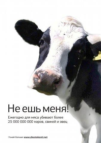 http://cs11194.vkontakte.ru/u6157311/100937947/x_96b0dd88.jpg