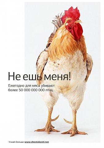 http://cs11194.vkontakte.ru/u6157311/100937947/x_eb67f190.jpg