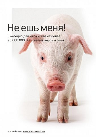 http://cs11194.vkontakte.ru/u6157311/100937947/x_ec04f31c.jpg
