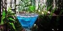 Коктейль Голубая лагуна - рецепт приготовления с фото и состав.