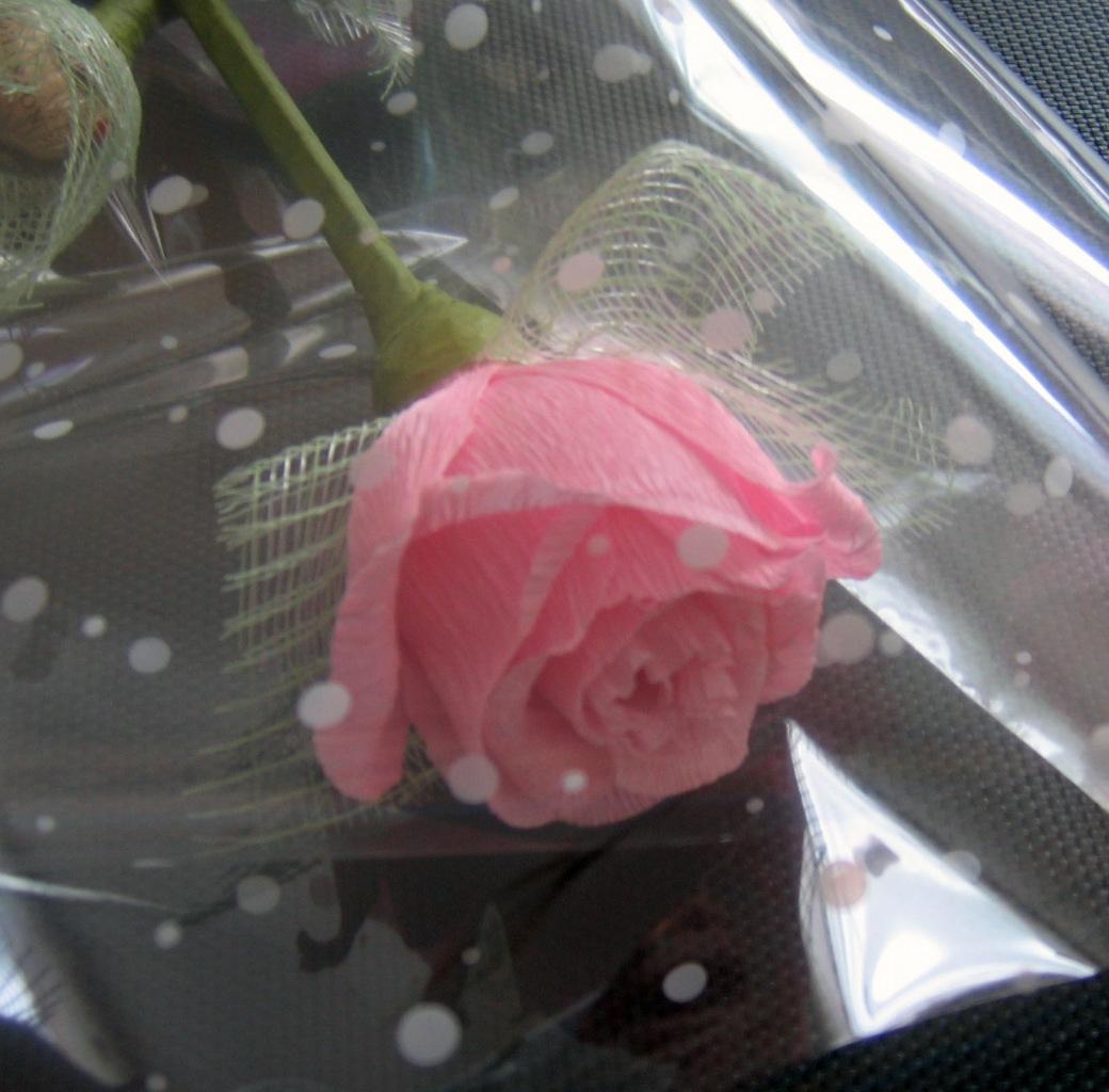 http://cs11210.vkontakte.ru/u4351753/95144040/z_c90690b9.jpg