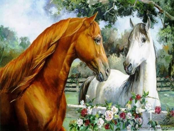 Картинки про природу с животными