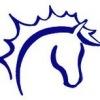 "Центр реабилитации лошадей ""Светозар"""