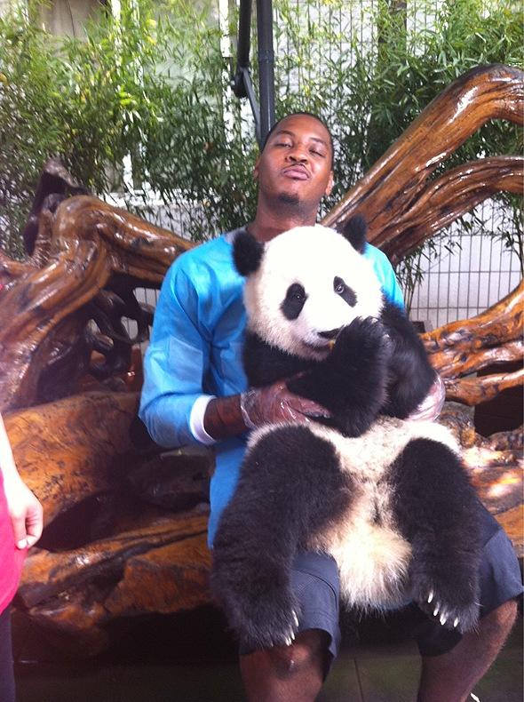 Энтони и Пол сфотографировались с пандой в Китае