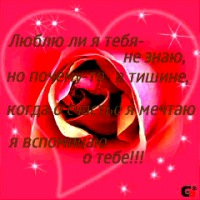 Кристина Небышева, Санкт-Петербург, id127266757