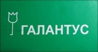 Галантус® Тюмень, 2 февраля , Тюмень, id150158433