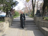Елена Мещерякова, 7 ноября , Ростов-на-Дону, id60082347