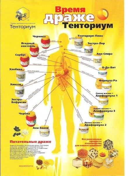 Полный спектр продукции тенториум на