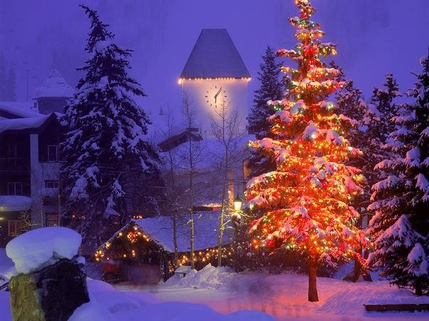 Во дворах Ленинского района пройдут детские новогодние елки.