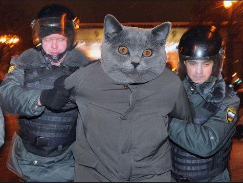 militsiya-ebetsya-foto