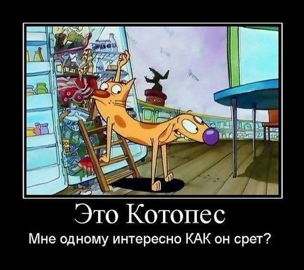 , помимо картинки приколы на телефон ...: smotrimtut.info/prikoly/18675-kartinki-prikoly-na-telefon-i-google...