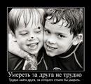 Taras Домнюк фото #7