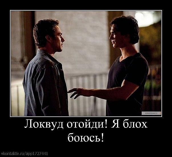 http://cs11264.vkontakte.ru/u102010307/111767715/x_7bdeebff.jpg