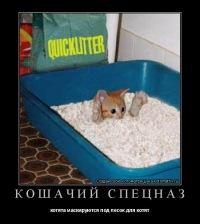 Андрей ___, 23 сентября , Ростов-на-Дону, id142348087