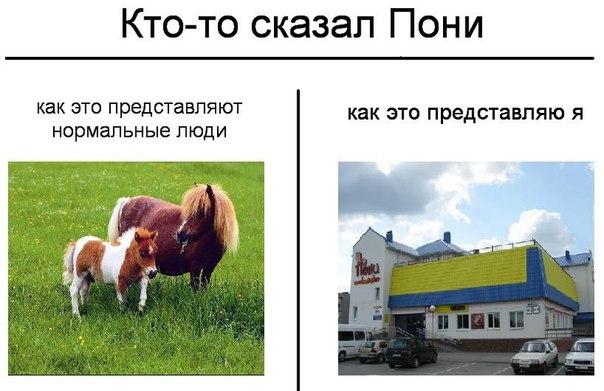http://cs11265.vk.me/u68617086/-14/x_f3cf0e99.jpg