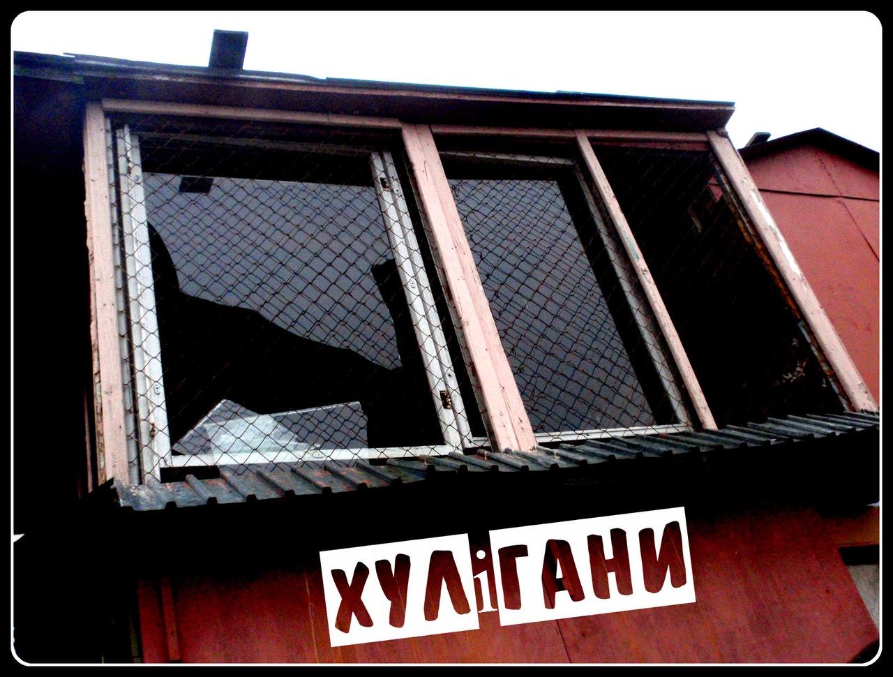 http://cs11274.vkontakte.ru/u71325006/145684261/z_b95aea34.jpg