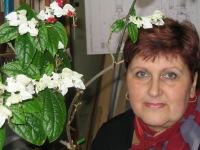 Ирина Антонова, 8 ноября , Санкт-Петербург, id122837267