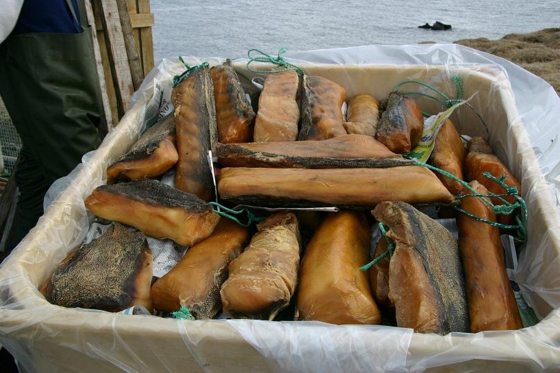 y 722c9b83 Акулье мясо – интересно знать