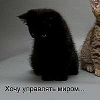 Рената Уразаева, 1 февраля , Уфа, id179644505