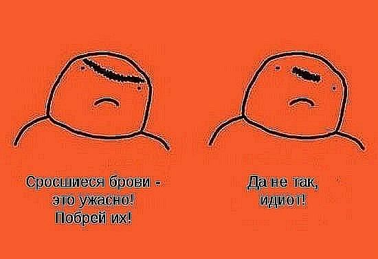 http://cs11308.vkontakte.ru/u48324262/118845980/x_a63a3138.jpg