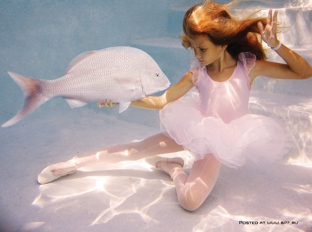 elena kalis collection girl and her fish pinterest