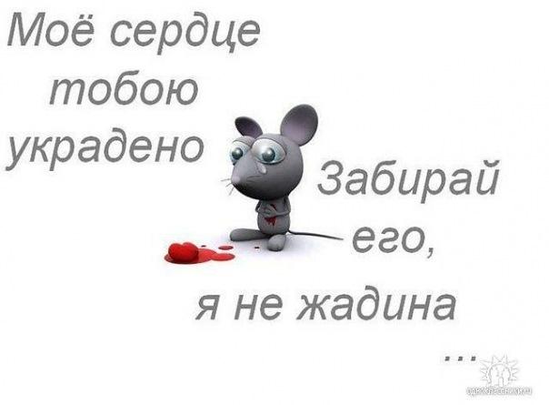 http://cs11328.vkontakte.ru/u33302394/121168826/x_4747244a.jpg