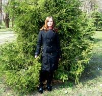 Svetlana Lipchanskaya, 1 декабря 1992, Белгород, id107662541