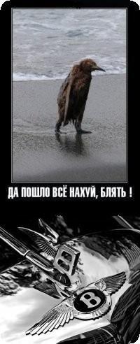 Дима Зайцев, 25 сентября 1998, Санкт-Петербург, id160089709