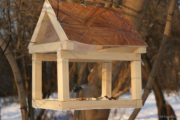 Кузьминки - Покормите птиц зимой - фото.
