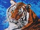 """553 Набор для вышивки бисером  """"Тигр """" ."""