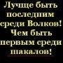 Димон Алексеев, 2 апреля 1998, Ульяновск, id156059422