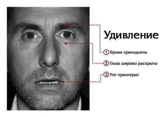Обществознание 9 Класс А. И. Кравченко ГДЗ
