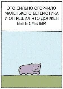 http://cs11362.userapi.com/v11362464/148/QxUKqY5ThGw.jpg