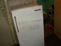 Катерина Петрова, 8 ноября 1985, Волгоград, id109476549