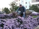 Николай Иванашкин. Фото №1