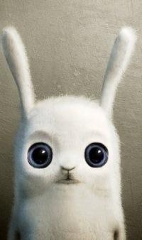 Mzungu Rabbit, 7 декабря 1993, Могилев, id172346231