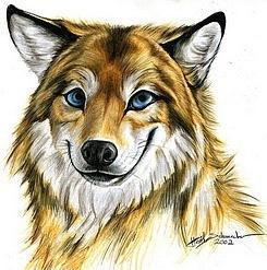 http://cs11381.vkontakte.ru/u7038385/128670696/x_9180ece8.jpg