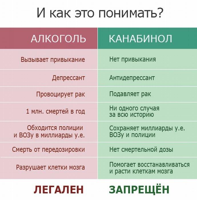Полицейские на Луганщине уничтожили 89 тыс. кустов конопли - Цензор.НЕТ 6996
