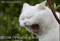 Дмитрий Спарровский, 3 июня , Москва, id166183606