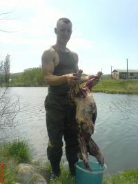 рыбаков константин дмитриевич тосно