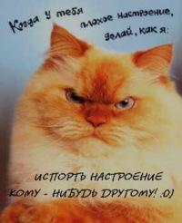Слава Злобный, 10 января , Одесса, id58404561
