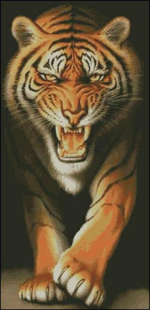 Тигры.  Вышивка крестом, схемы.