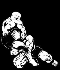 Спорт микс файт бокс кикбоксинг