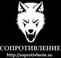 Влад Ерофеев, 13 сентября 1994, Ростов-на-Дону, id154811733