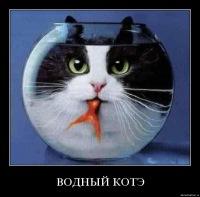 Руслан Кудрявцев, Кашин, id119898871