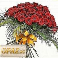 Інна Оксанич, 9 августа 1994, Киев, id165738441