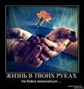 Анна Лёвина фото #29