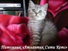 Анна Трубникова, 6 мая , Сургут, id120083286
