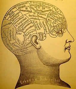 Удивительные свойства человеческого мозга